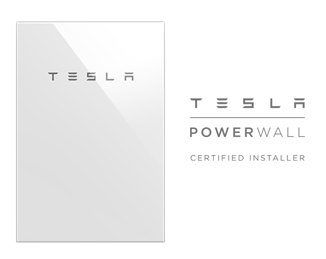 front facing tesla + logo